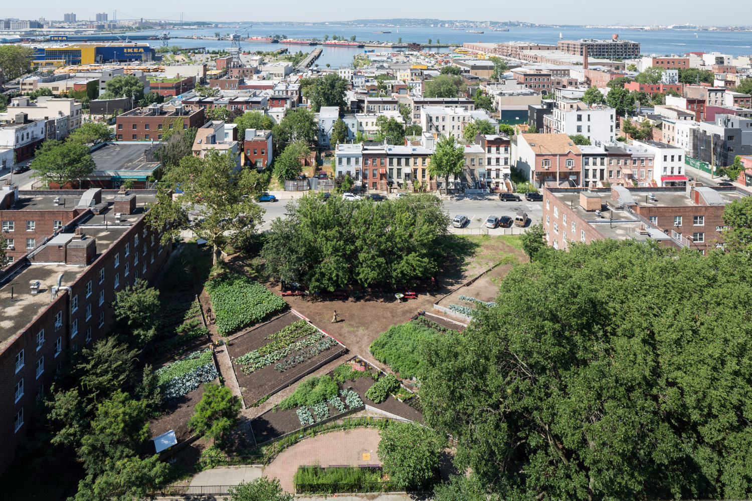 This is an areal view of the Red Hood NYCHA Farm